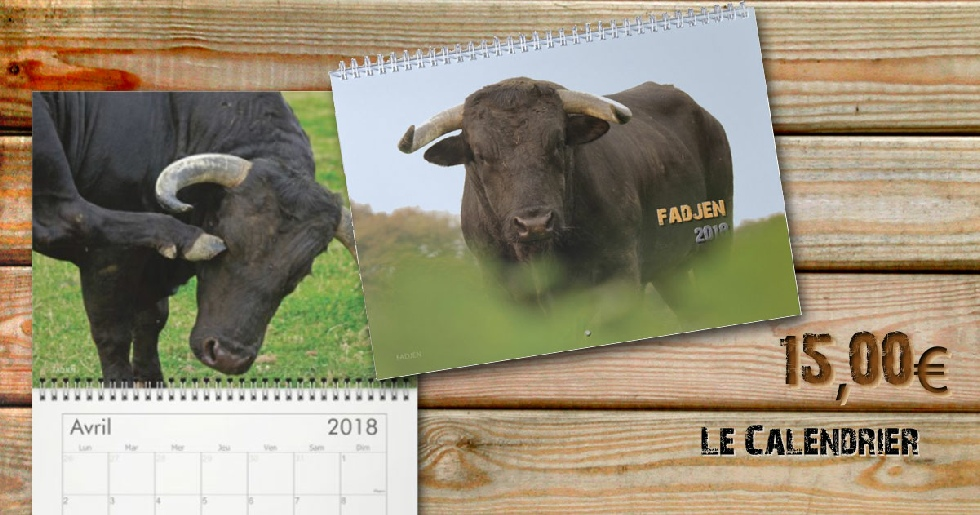 Calendrier vaches 2018 - association anti corrida Fadjen